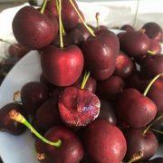 Cherry-my07