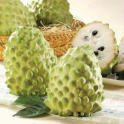 Fresh-Atemoya-Custard-Apple-from-Taiwan