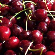 cherry-new-zealand